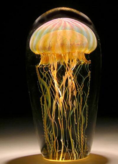 Passion-Moon-Jellyfish